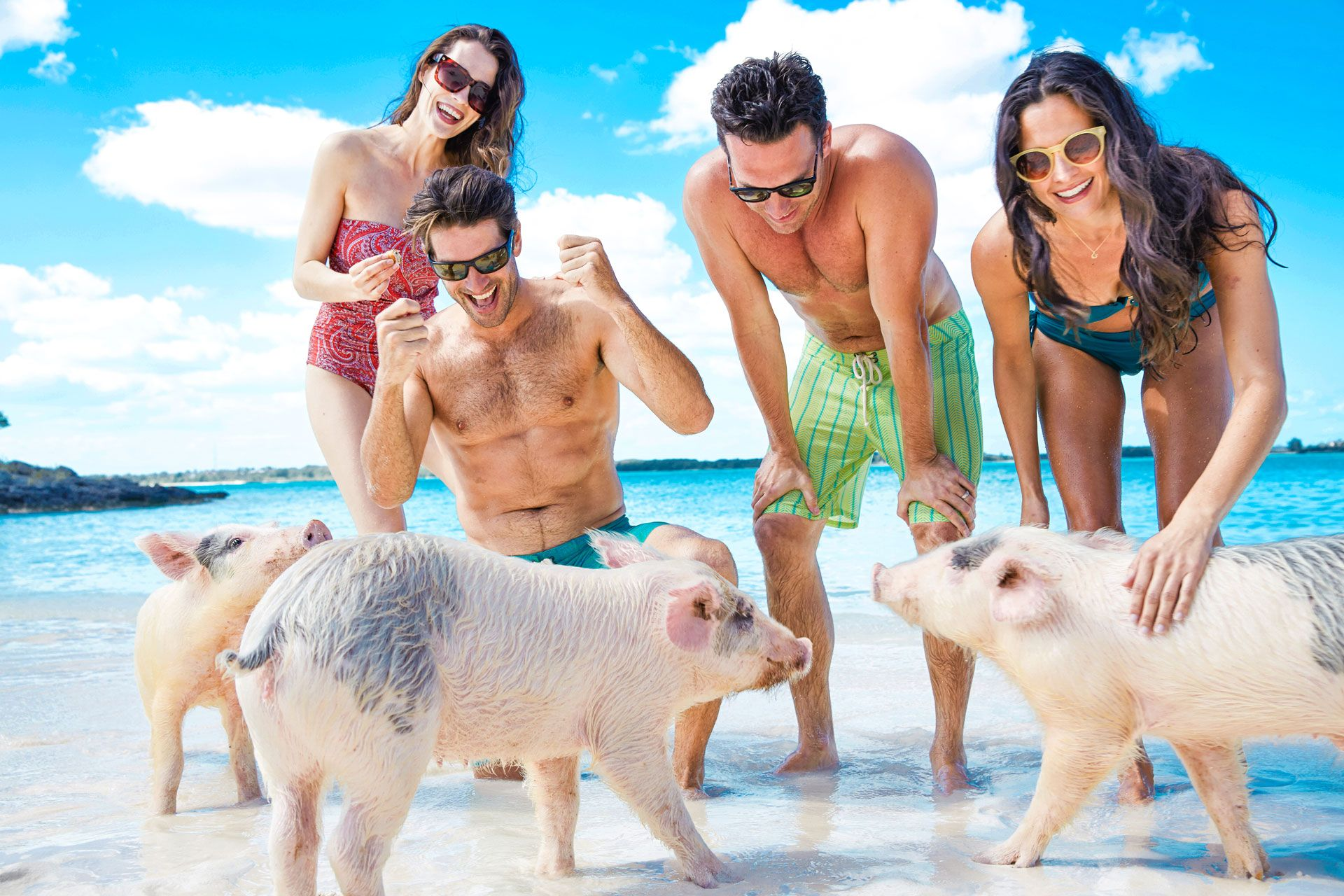 Group tour on Pig Island