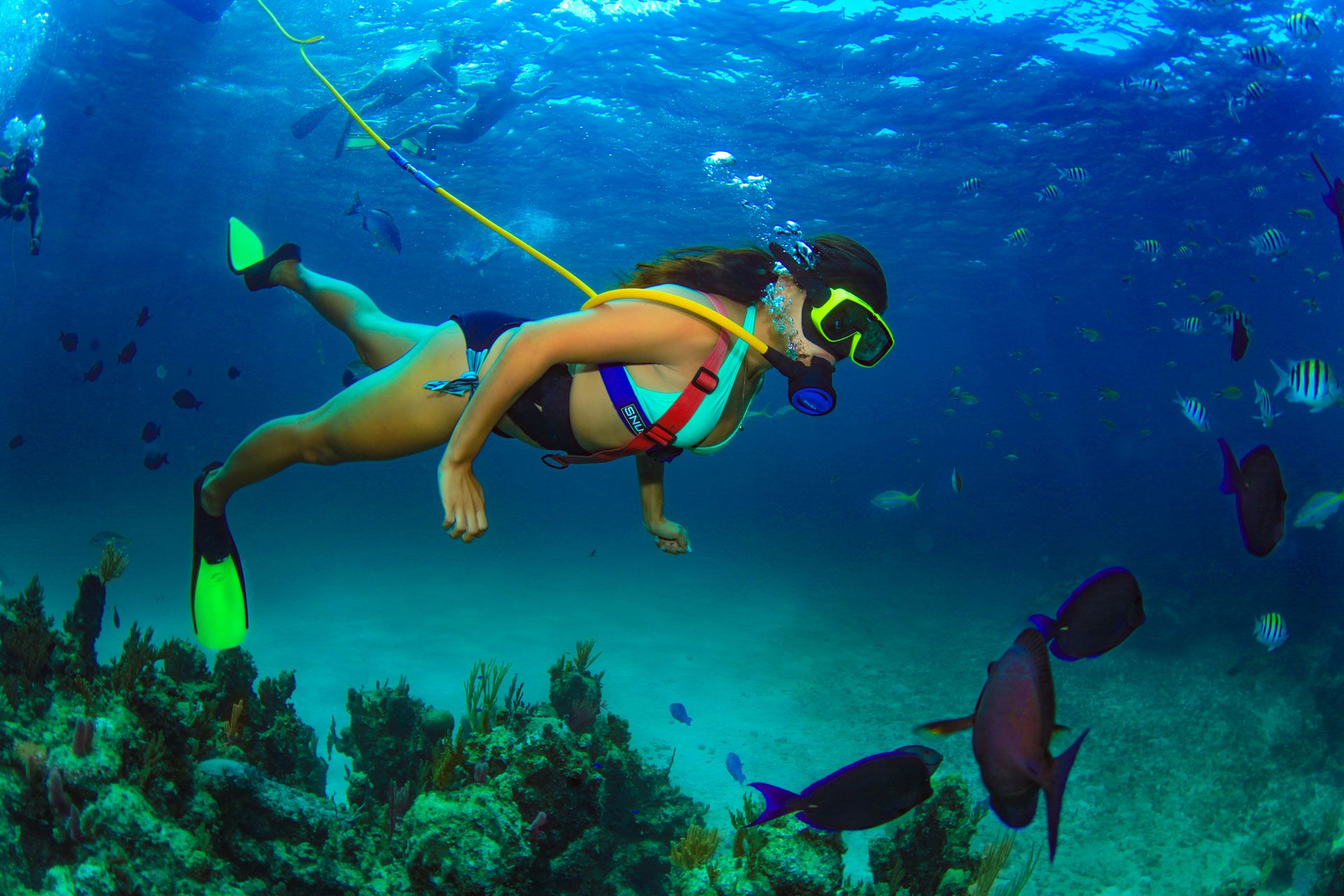 Woman SNUBA® diving over reef