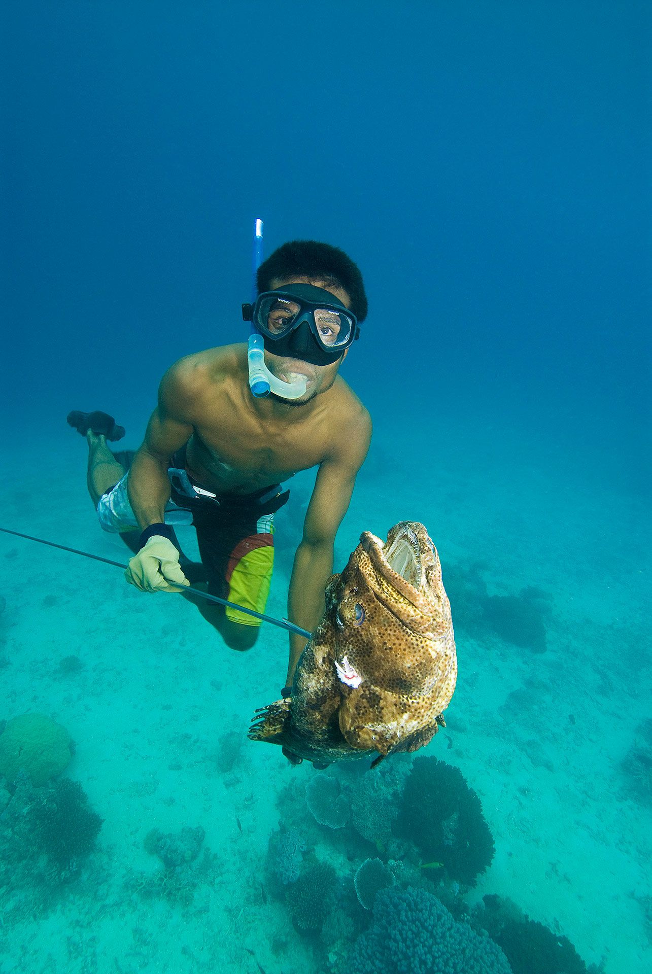 man spearfishing a grouper