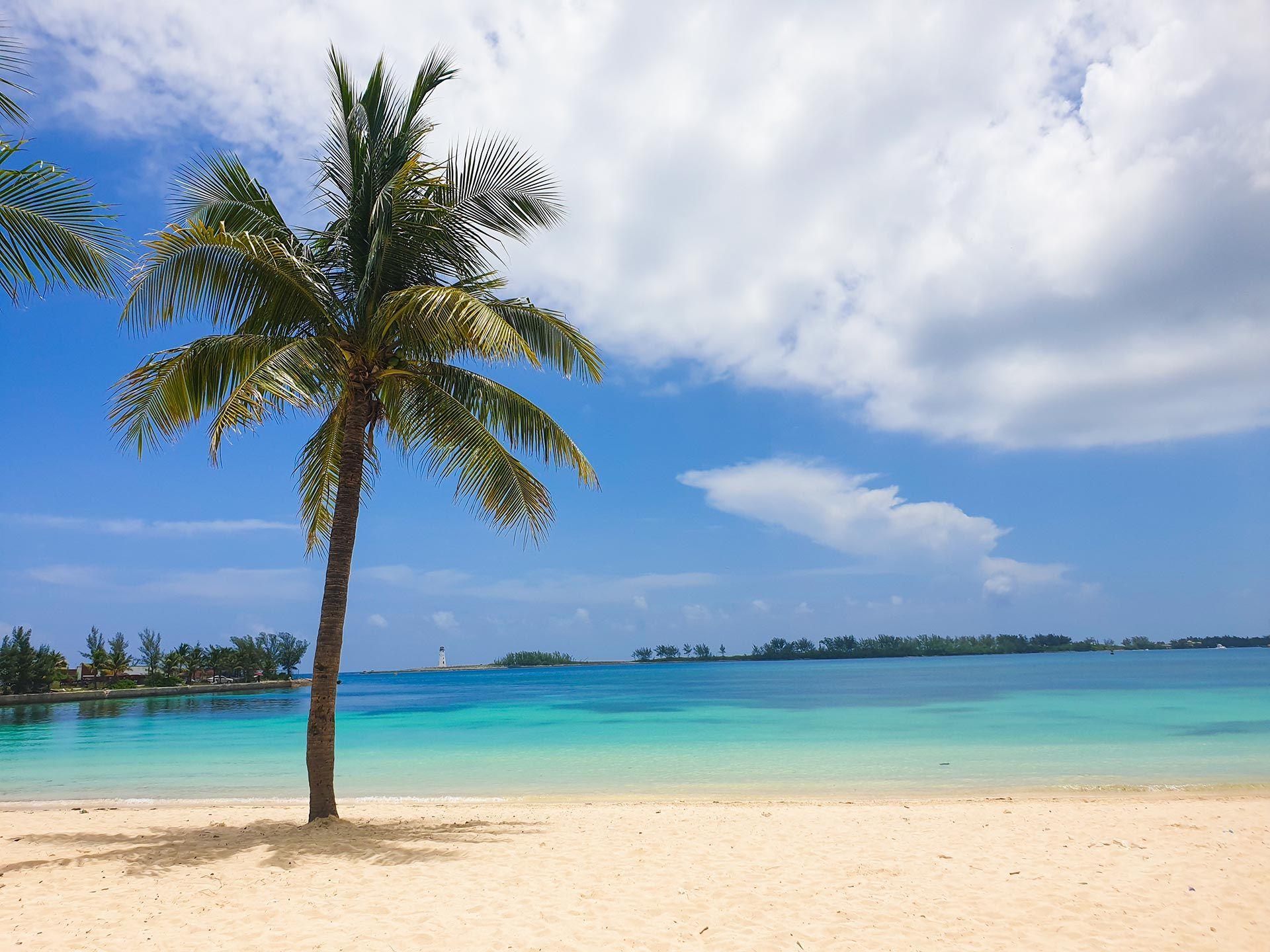 The local scene in nassau, bahamas