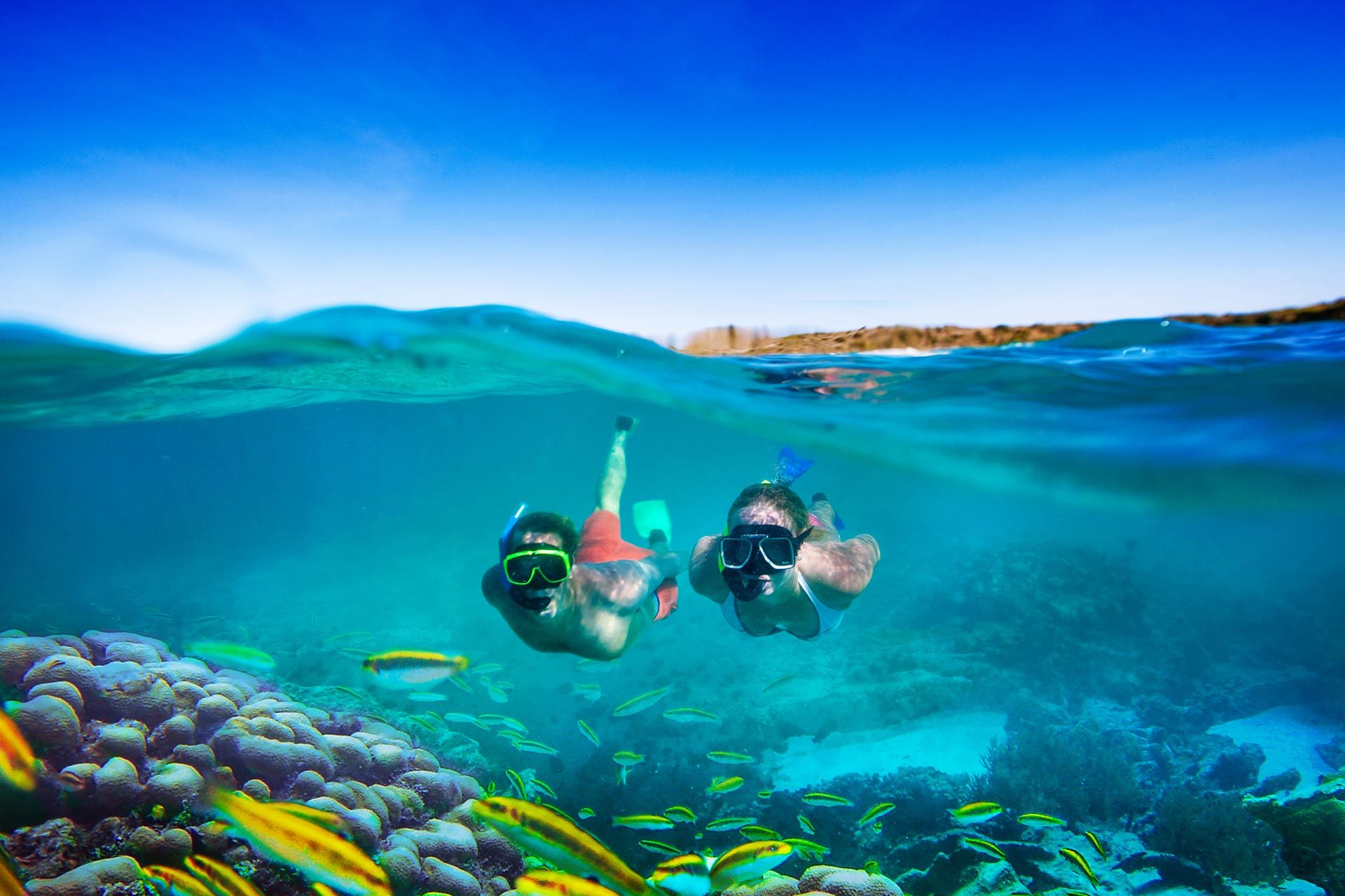 couple snorkeling over reef