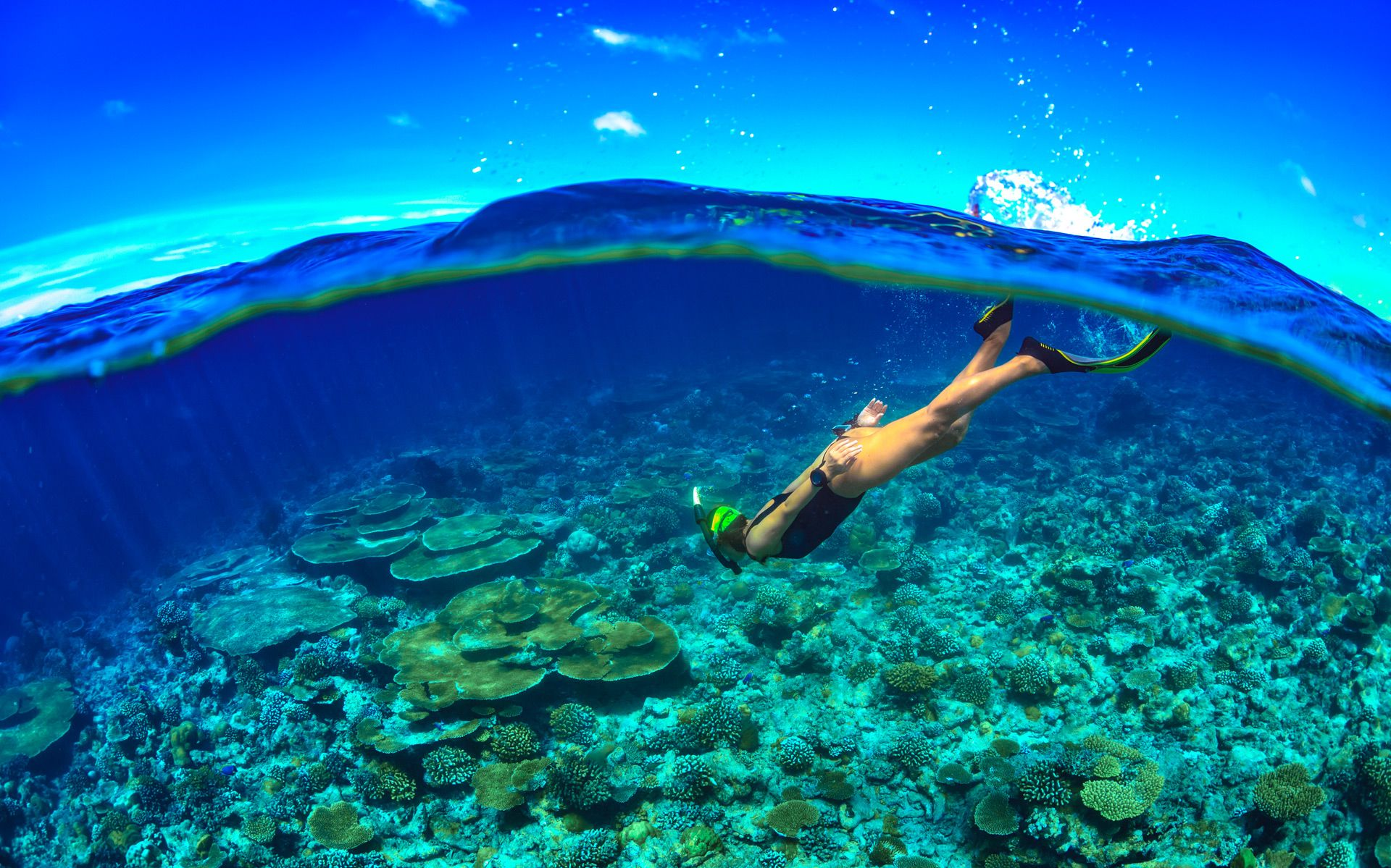 best time to visit barbados snorkeling