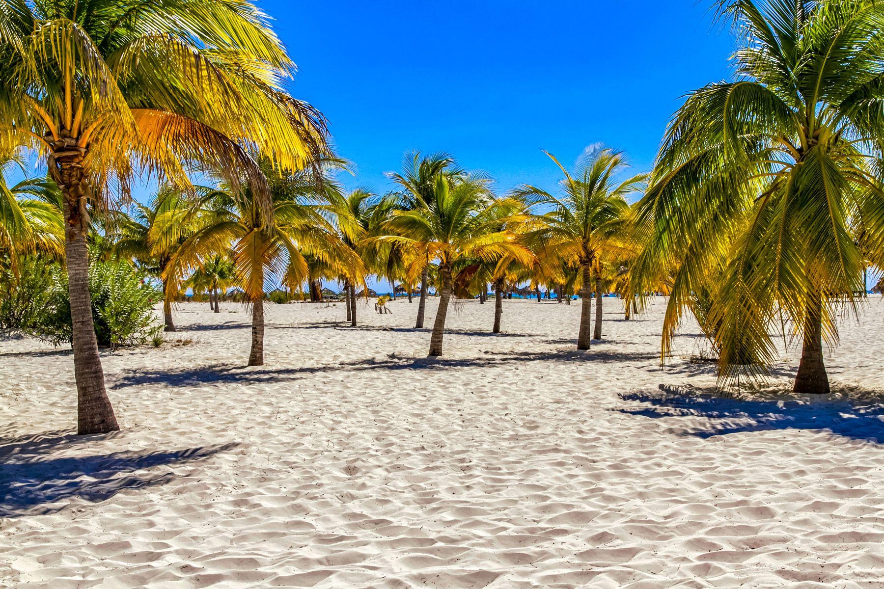 Playa Paraiso Cayo Largo Island Cuba