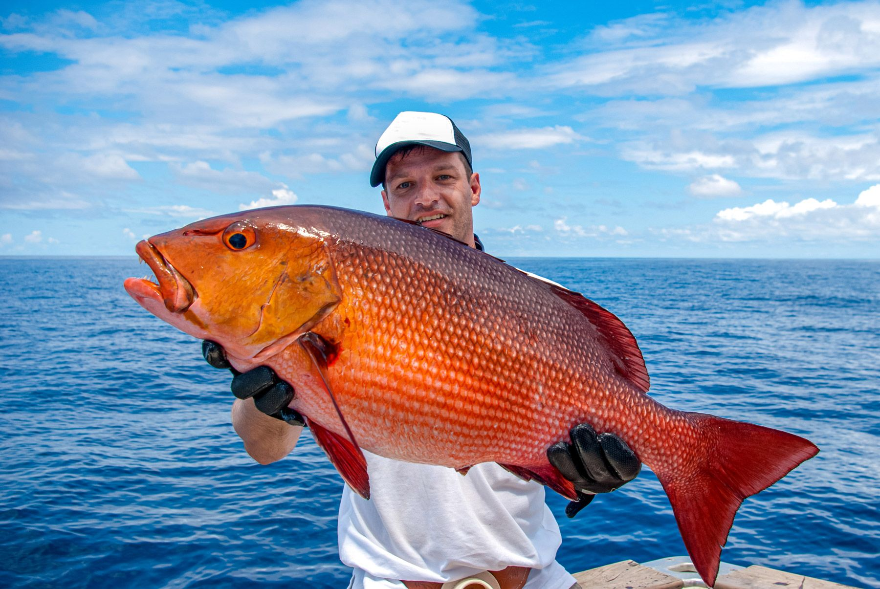 fisherman holding red snapper