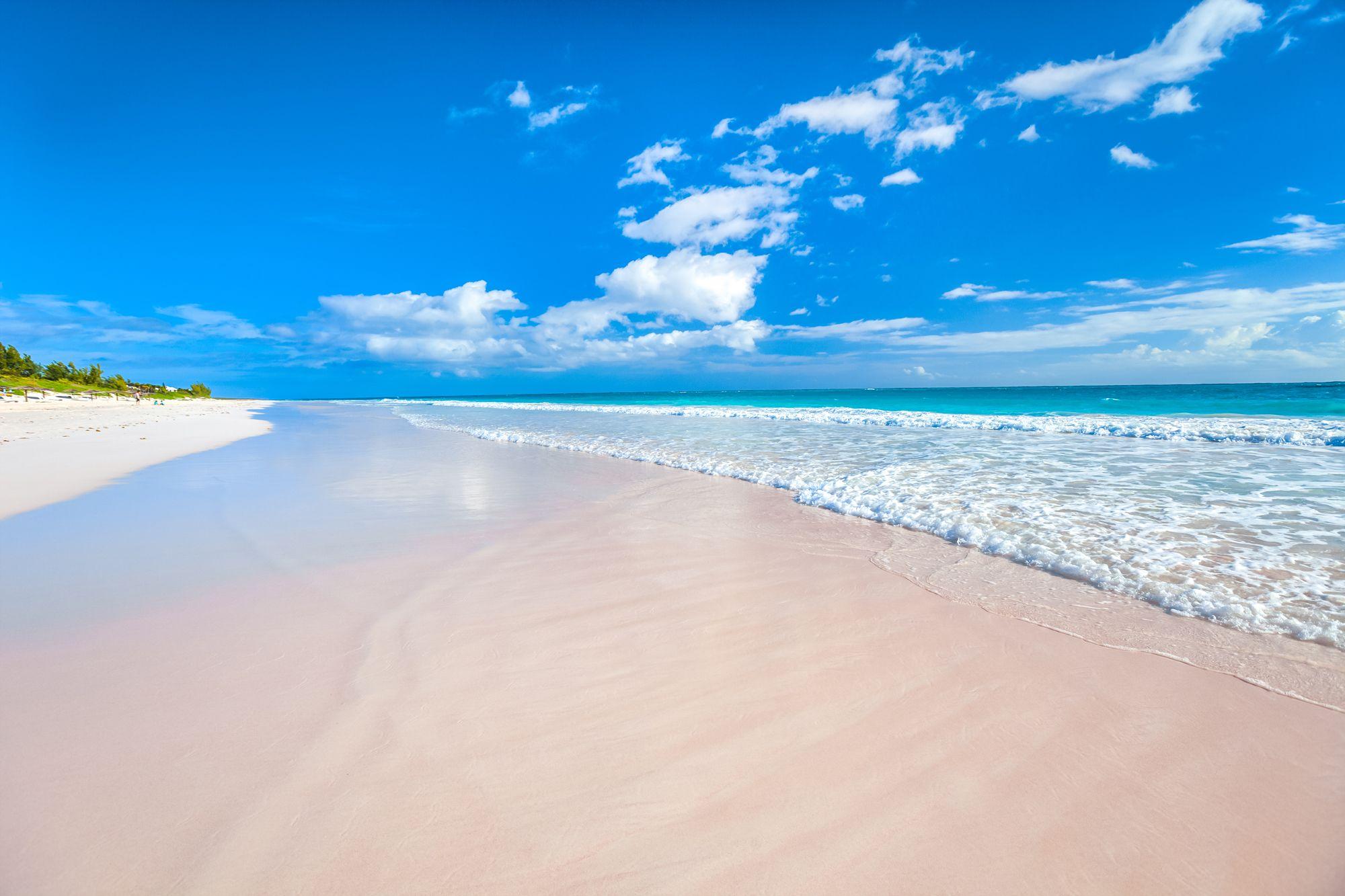 Pink Sand Beach Bahamas Harbour island