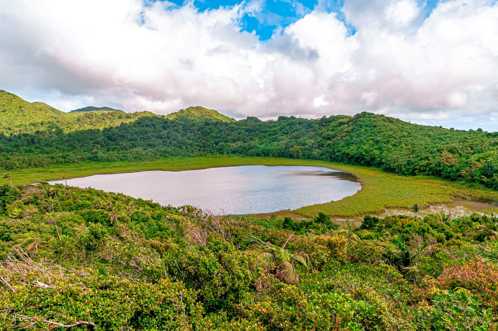 Grand Etang National Park Grenada Volcano Crater Lake