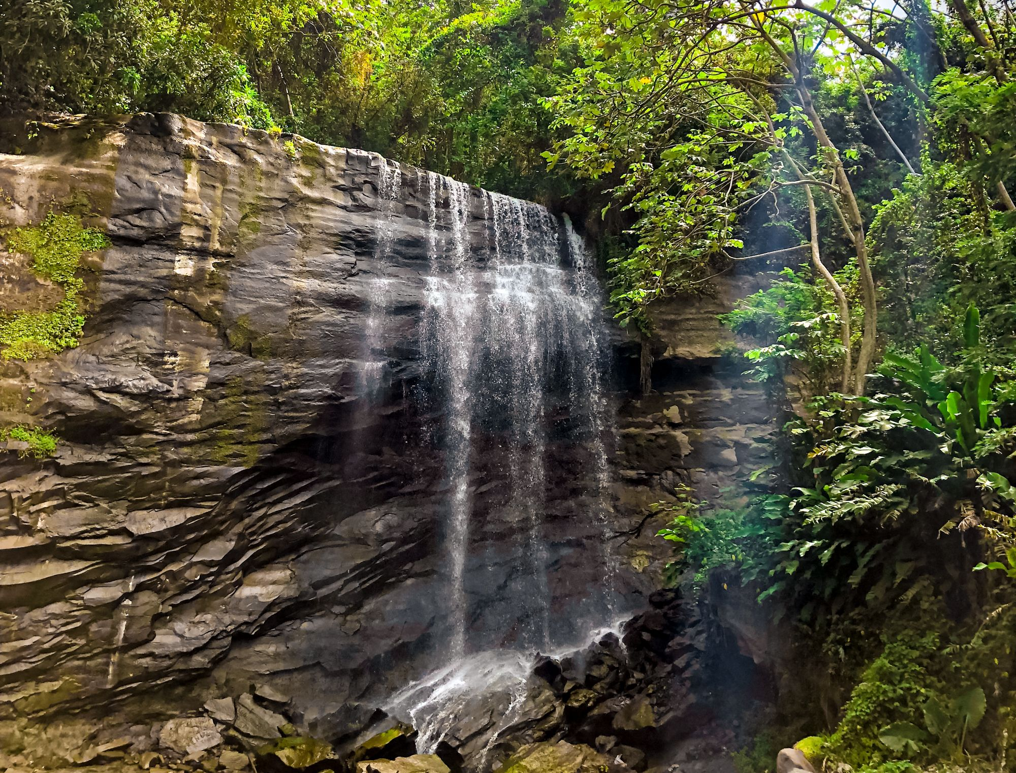 Royal Mount Carmel Waterfalls Grenada