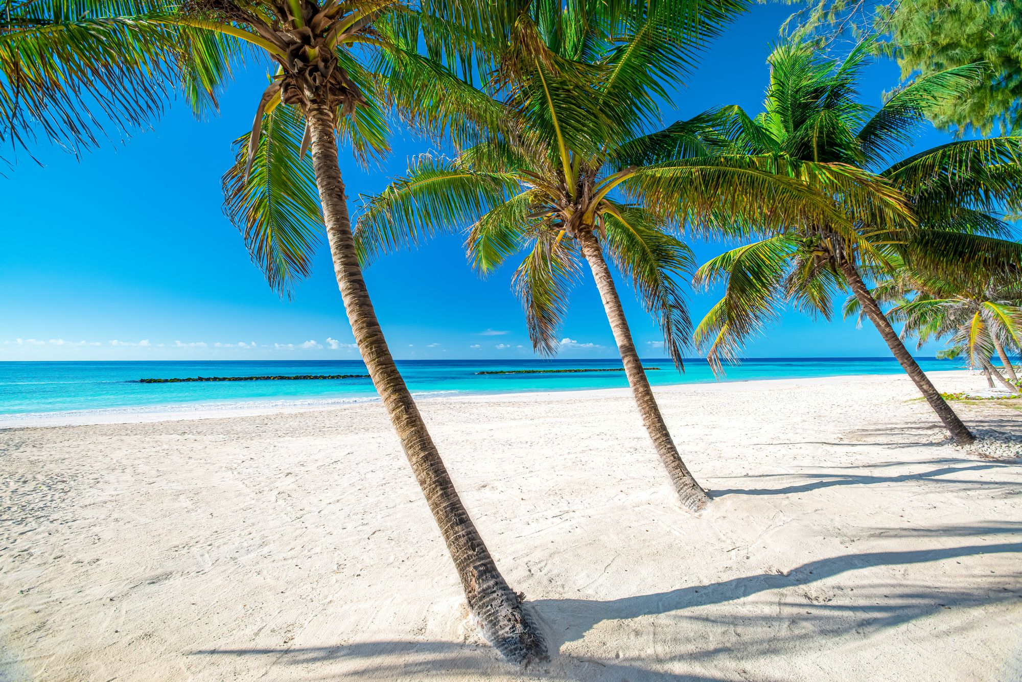 15 Incredible Things Barbados Is Known For