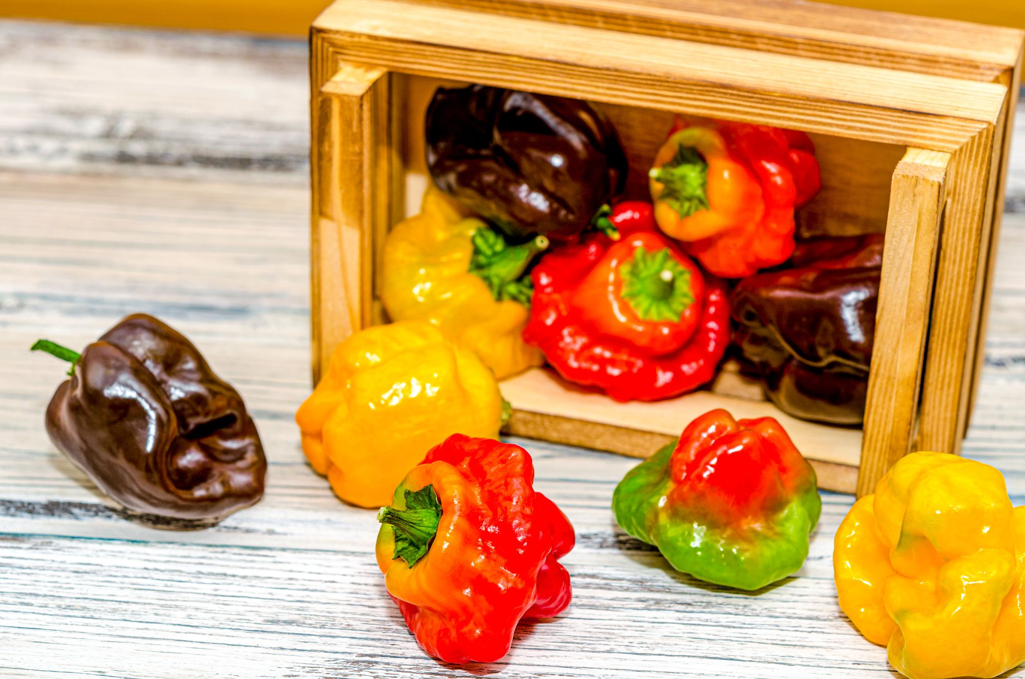 Antigua Hot Sauce Chili Peppers