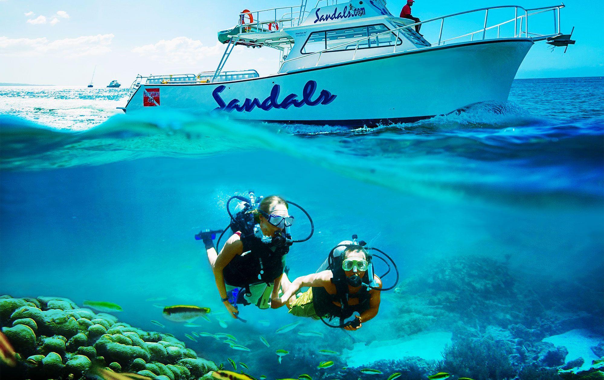 Scuba Dive Saint Lucia