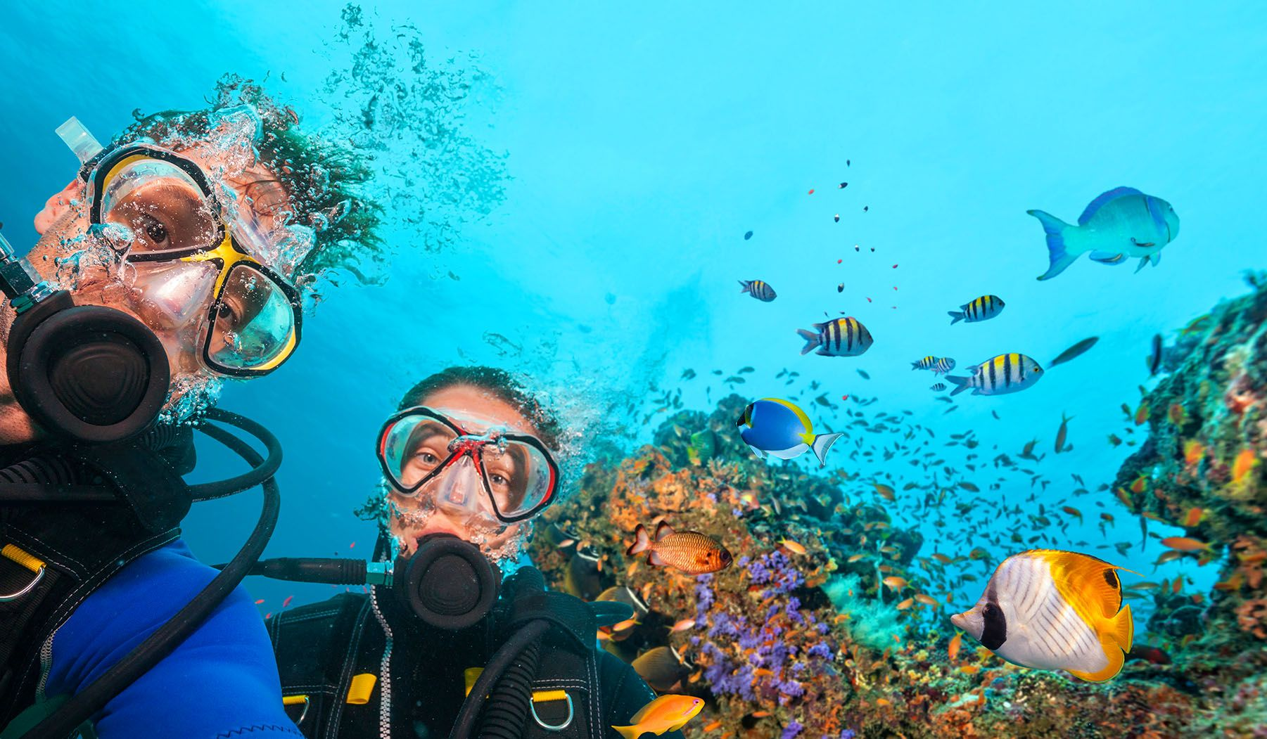 Scuba Diving In Antigua: What To Expect?