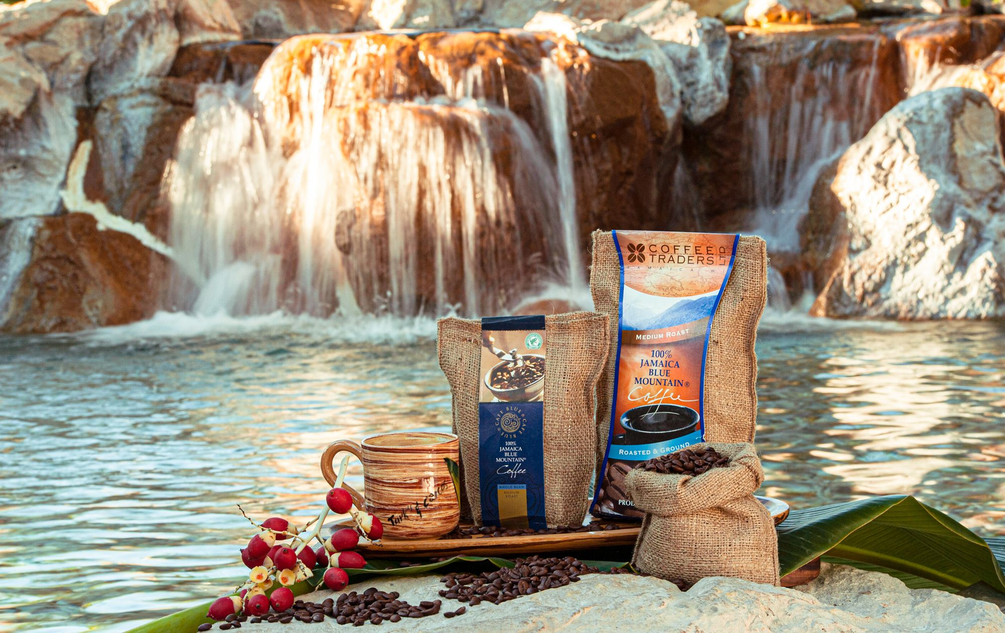 Blue-Montain-Coffee